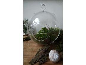 Aerárium koule