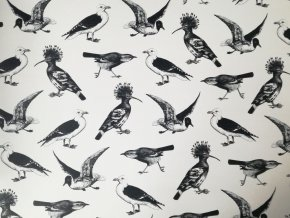 Dekorační papír ptáci