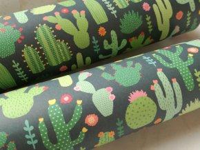 Dekorační papír kaktusy II
