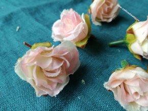 Květ růže růžová