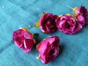 Květ růže fialová