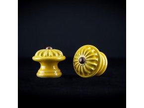Knopka žlutá střední vzor č.4