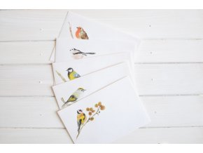 obalky ptacci1