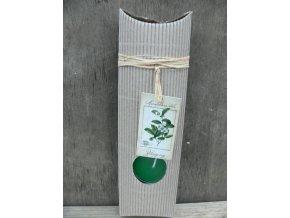 Čajová svíčka dárková - zelený čaj
