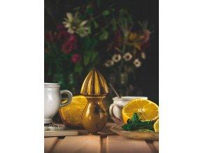 citrusovac hnedy s efekty