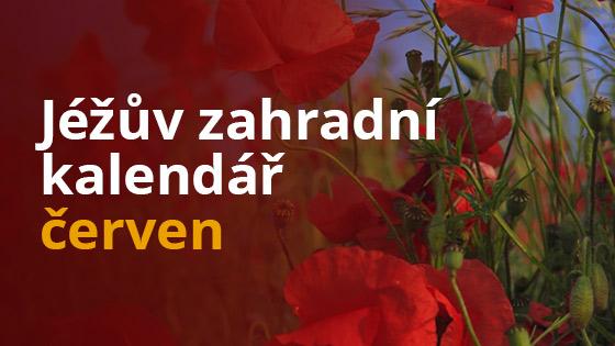 Jéžův zahradní kalendář - červen