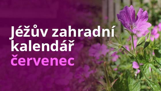 Jéžův zahradní kalendář - červenec