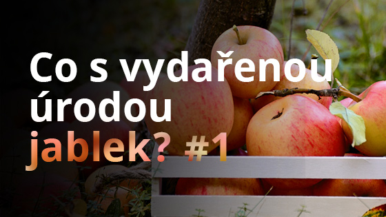 Co s vydařenou úrodou jablek? #1