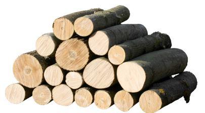 Zpracování dřeva