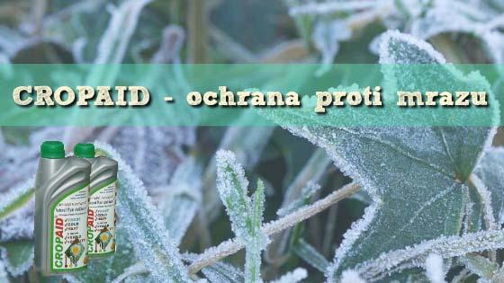 cropaid-ochrana-proti-mrazu