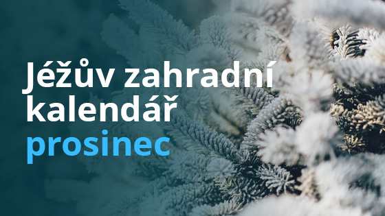 kalendar-prosinec