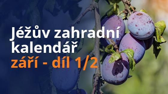 kalendar-zari1