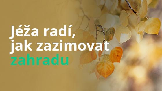 banner-jak-zazimovat-zahradu