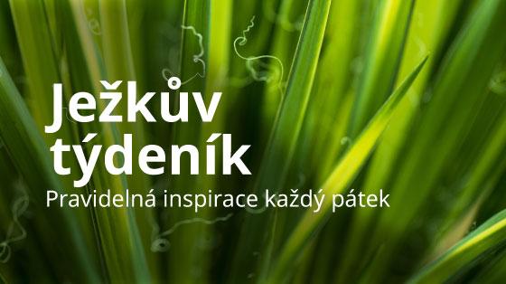 bannery-jezkuv-tydenik