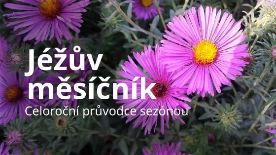 bannery-jezkuv-mesicnik