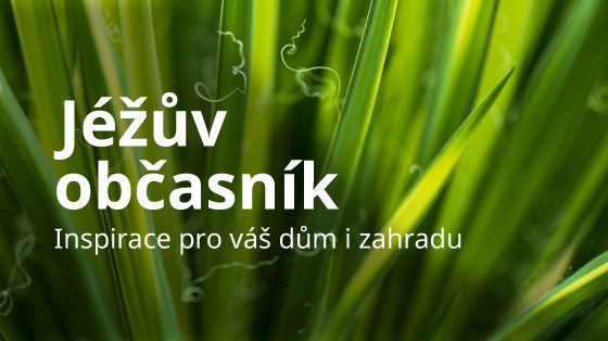 banner-jezuv-obcasnik