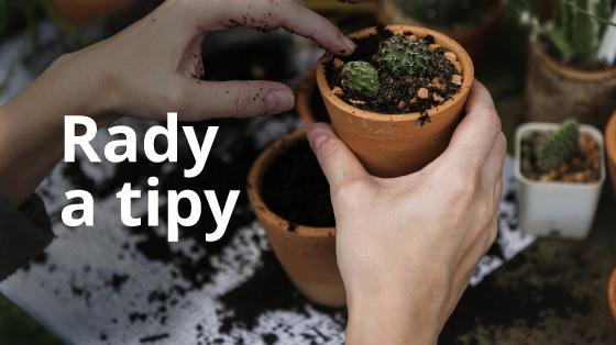 bannery-rady-tipy