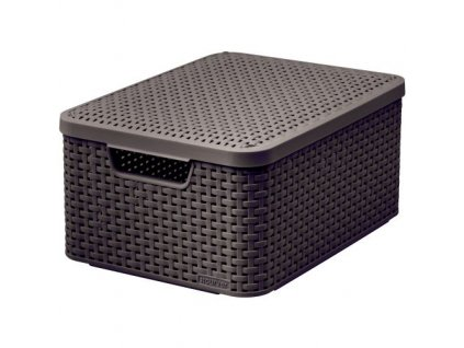 box úložný RATTAN 40x29x19cm (M) s víkem, STYLE2, PH HN