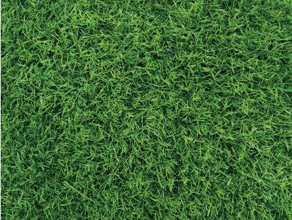 Umělý trávník Special Mat 2 m x 25 m