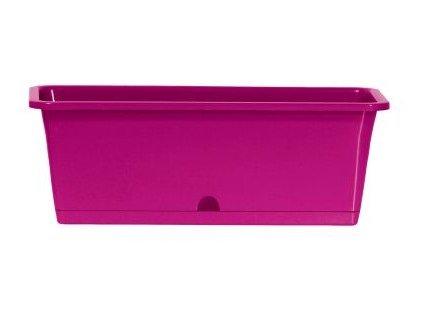 Truhlík s miskou CAMELIA 50,8 x 18,8 cm, 15,5l, fialová