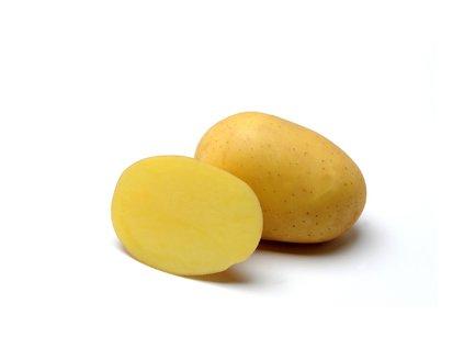 MARABEL, raná odrůda brambor, varný typ B