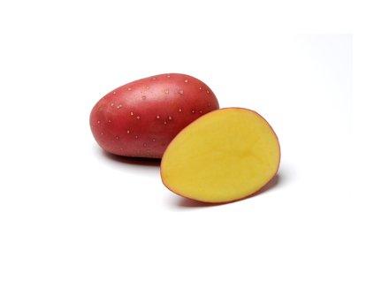 LAURA, poloraná odrůda brambor, varný typ B, červená slupka