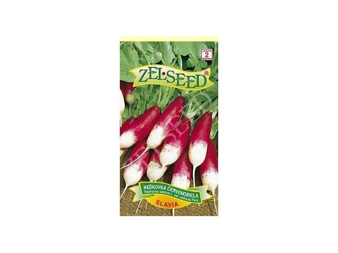 redkovka cervenobiela slavia 5g zelseed