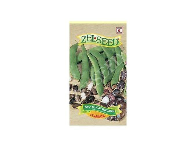 fazula kolikova velkozrnna strakata 38g zelseed