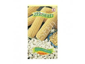 kukurica pukancova jantar f1 18g zelseed