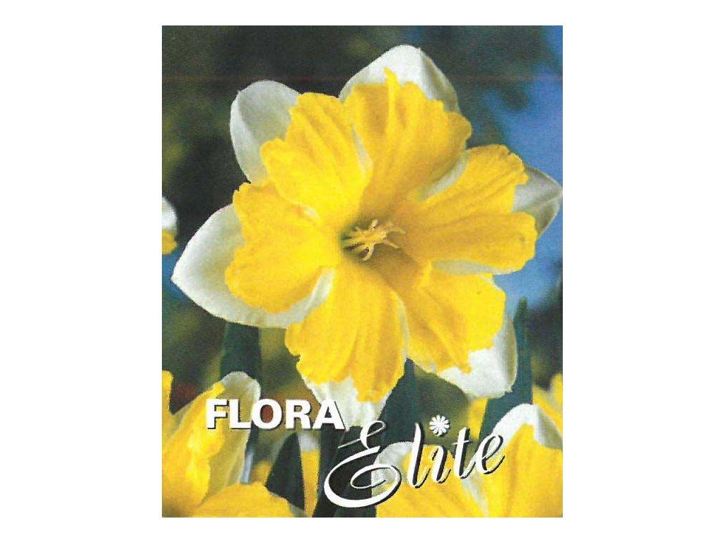 Narcis Split Corona Cassata 5 ks, 12/14