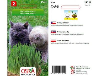 Tráva pro kočky _20g