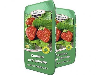 Zemina pro jahody 20 l, RA