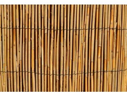 Rákosová rohož 1,5 x 5 m - celý, úzký