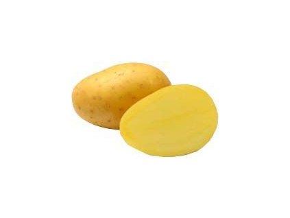 Sadba brambor Antonia 5 kg, PR