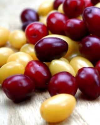 Netradiční ovoce a zelenina