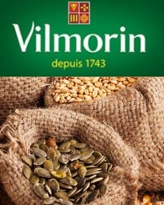 Semínka Vilmorin
