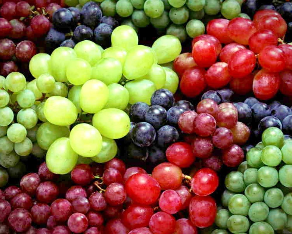 Bezsemenné odrůdy