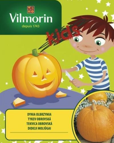 Kolekce semen pro děti, minizahrádky