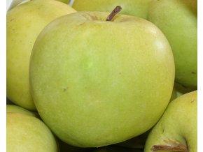 Jabloň ´Mutsu´