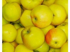 Jabloň ´Zvonkové´