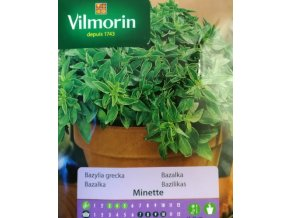 Vilmorin Bazalka řecká 'Minette'