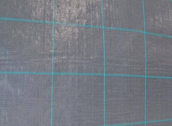Textilie tkaná čená