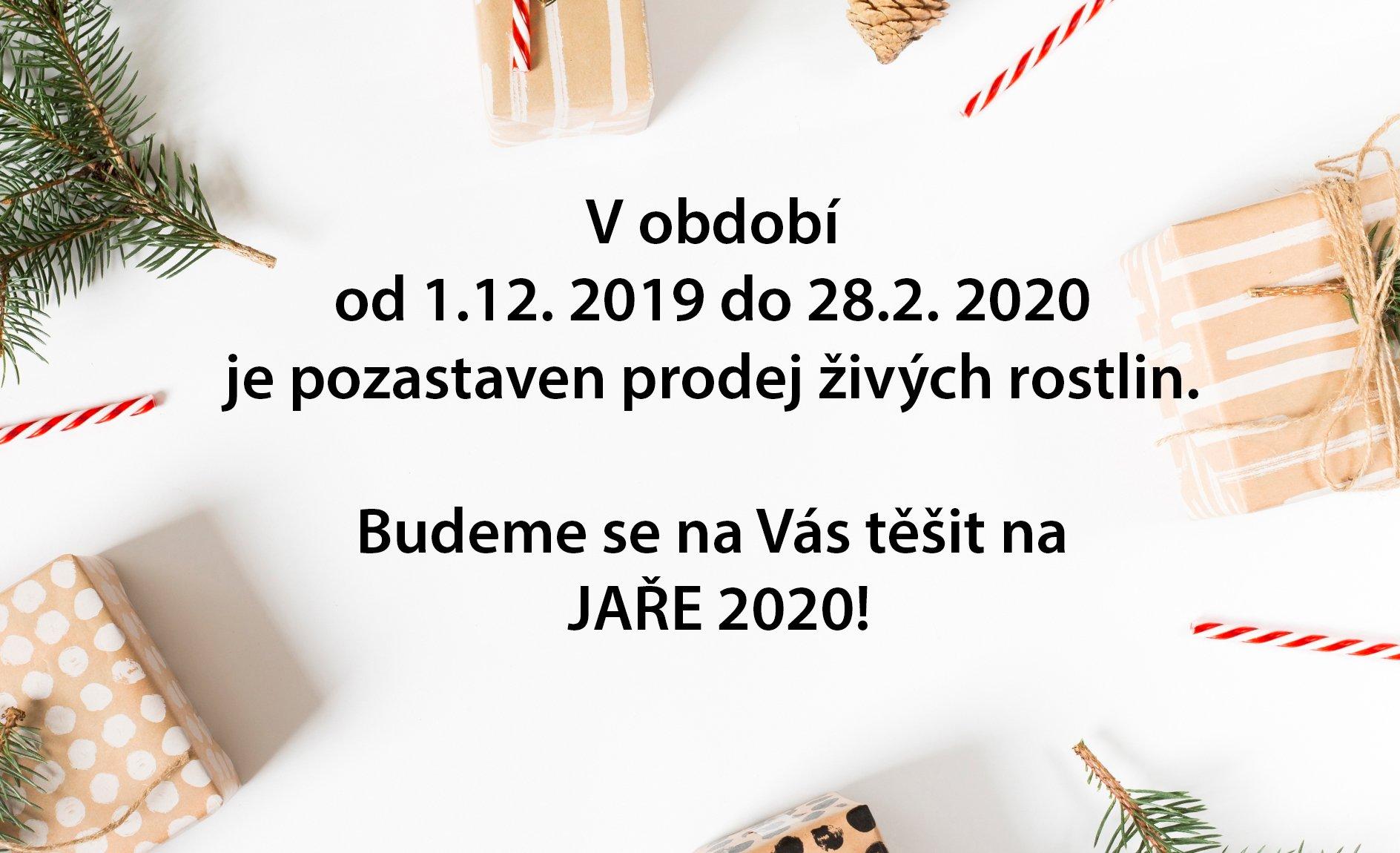 Zima 2019-2020