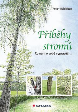 bmid_pribehy-stromu-sQg-358078