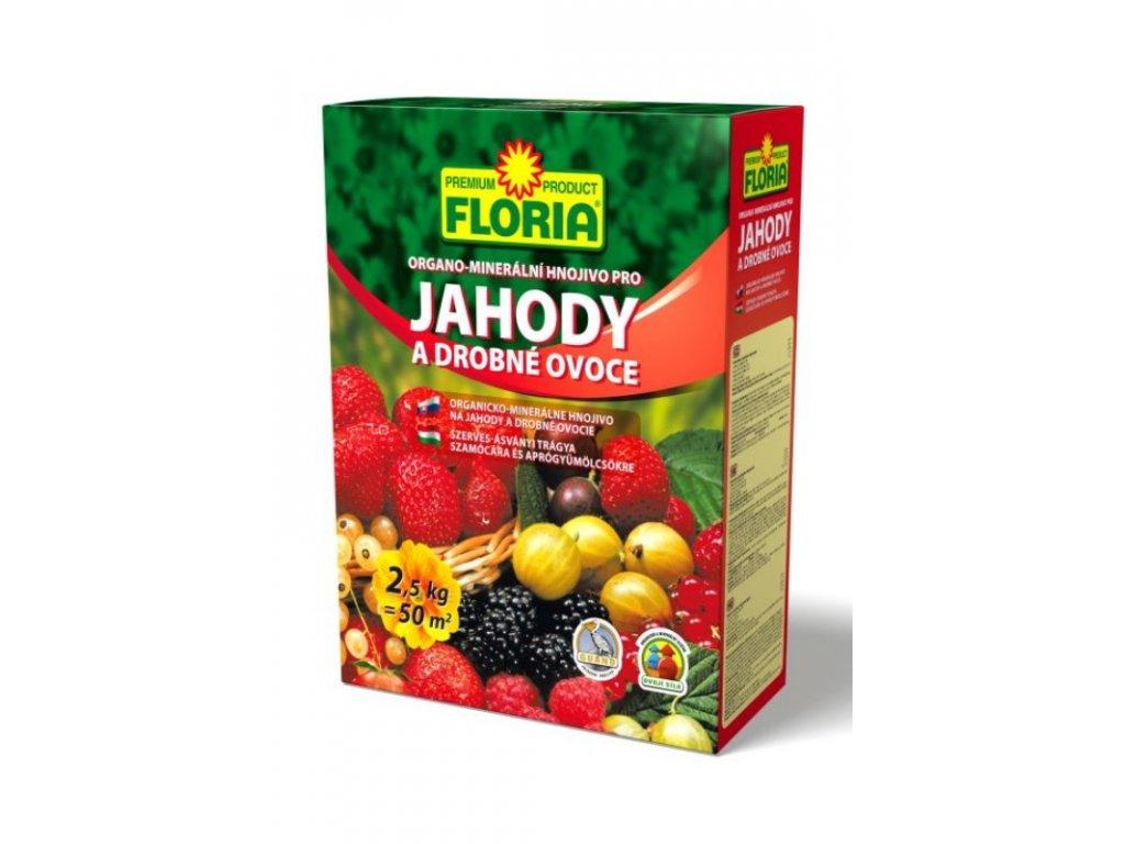 008401 FLORIA OM hnojivo pro drobne ovoce 2,5kg P 8594005002586