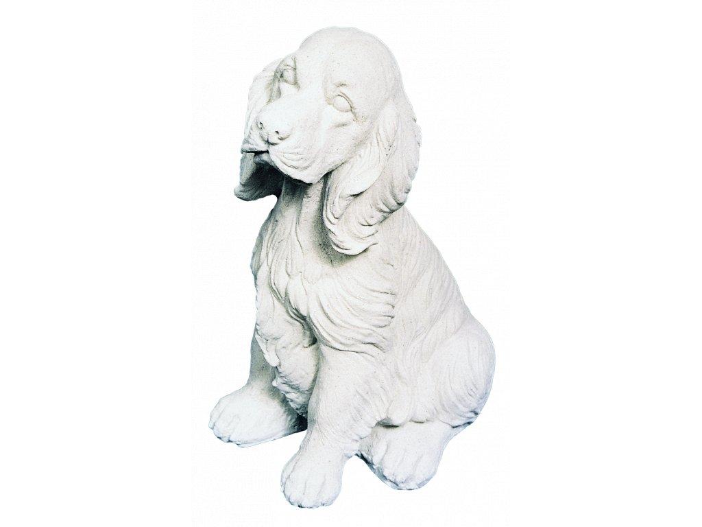 zahradní dekorace zvířat - zahradní sochy zvířat, Kokršpaněl  II  10kg  T