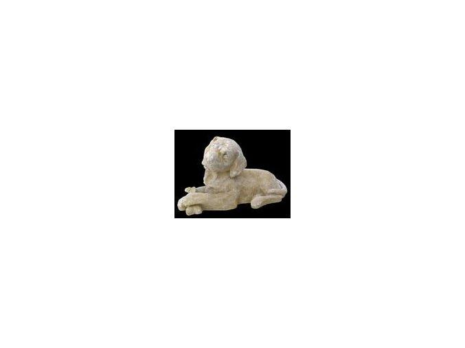 sochy zvířat, Rotvajler 8,5 kg  T