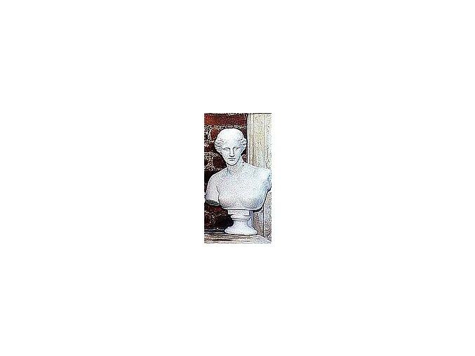 zahradní socha, Venuše mél. busta 20kg  T