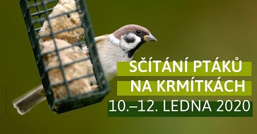 sčítání ptáků na krmítkách