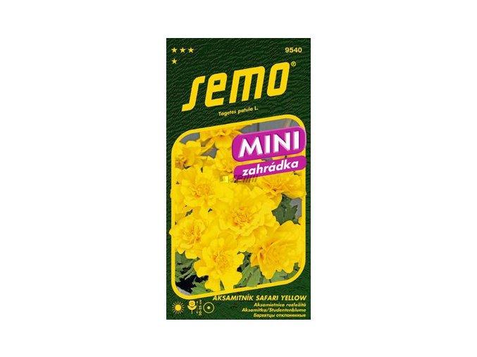 40478 aksamitnik rozkladity safari yellow 30s serie mini
